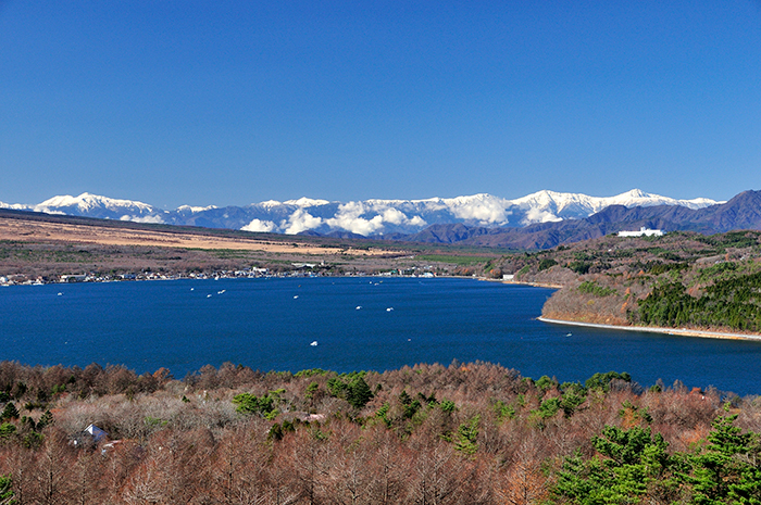 キャンプ 場 山中湖