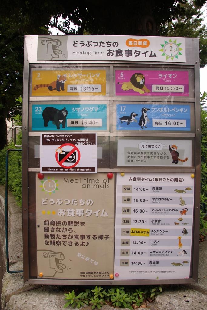 野毛山動物園_64