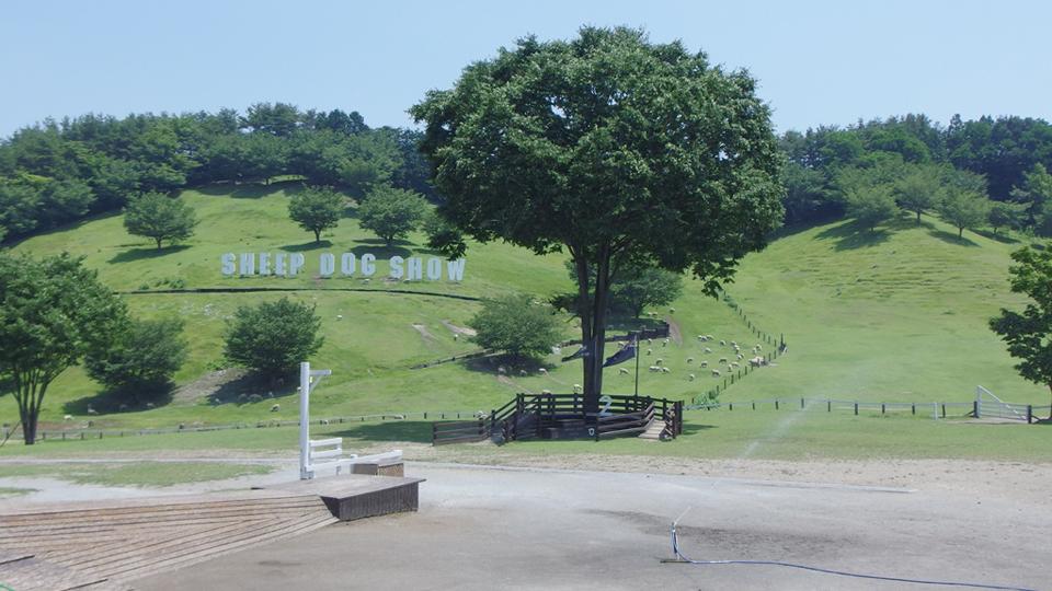 伊香保グリーン牧場
