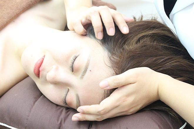 【幸せ!ボンビーガール】美人双子鍼灸師の現在・資格