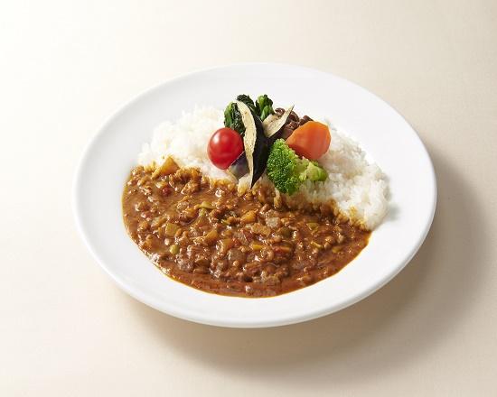 【9J】15種類の野菜とチキンのキーマカレー